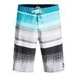 QUIKSILVER EVERYDAY STRIPE 21
